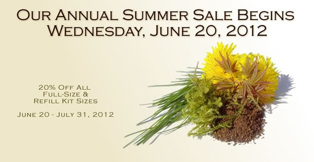 annual summer sale